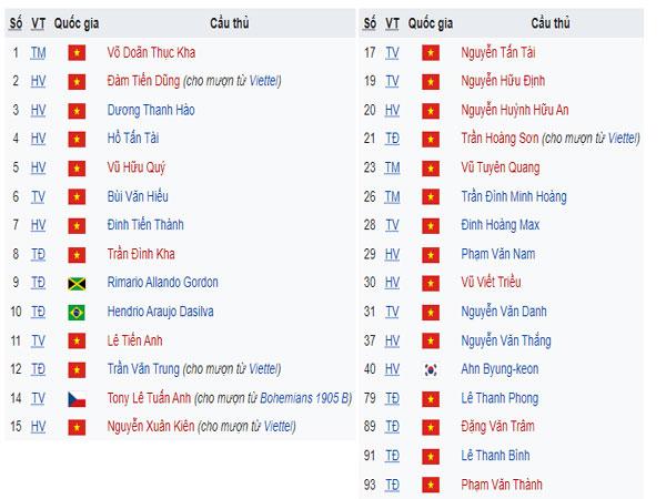 Đội hình thi đấu chính thức của câu lạc bộ Bình Định